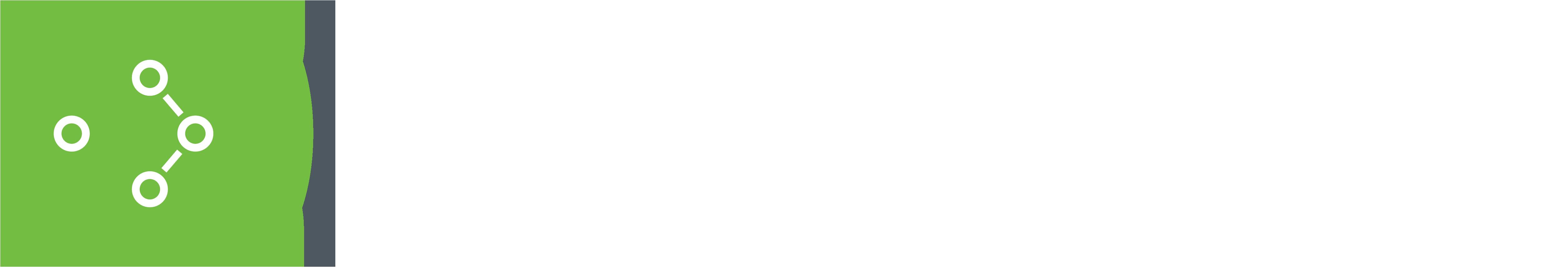 Bioclinica Logo White